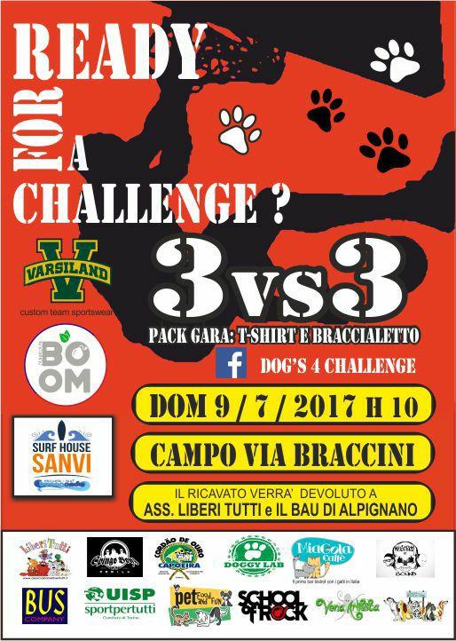 locandina Dog's 4 Challenge